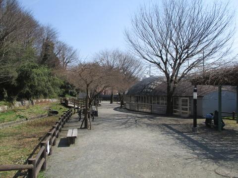 118ほたる公園2