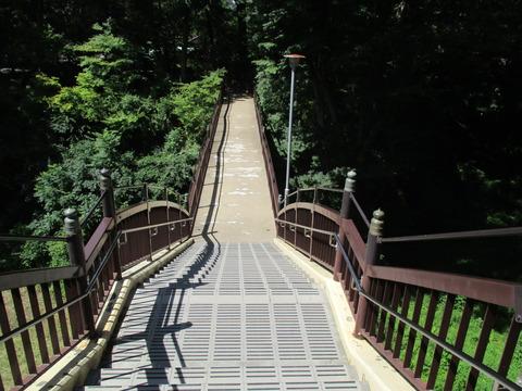 246酔月橋2