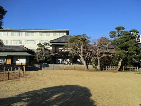 272旧堀田邸・さくら庭園8