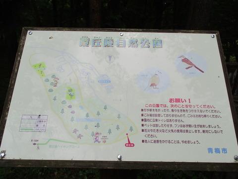 182霞丘陵ハイキングコース4