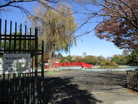65菊名池公園プール2