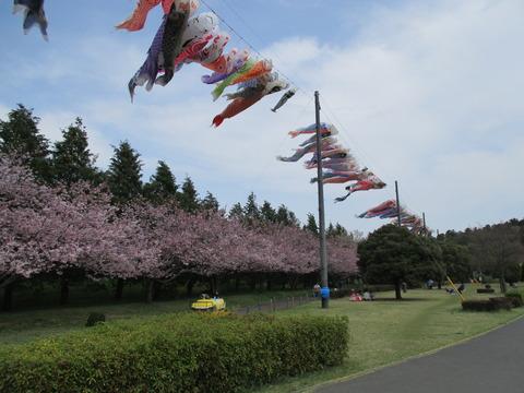117小山総合公園12