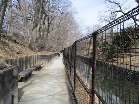 15日光橋公園8