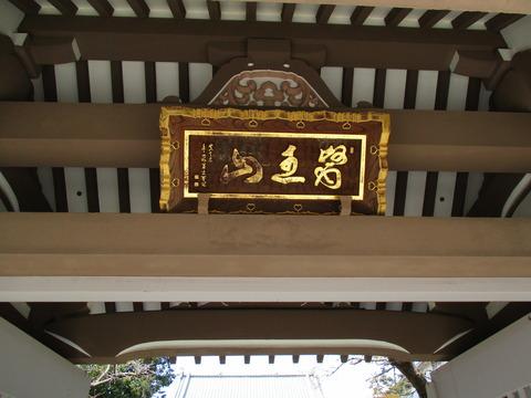 141東円寺5