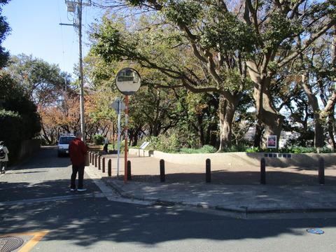 99菊名桜山公園1