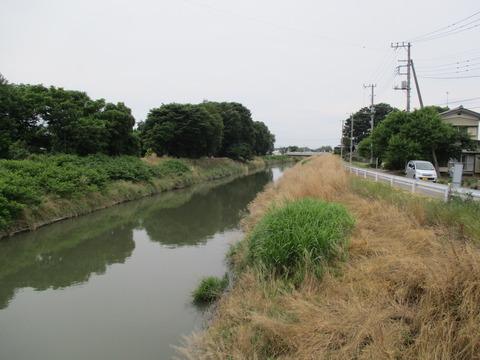 121野通川3