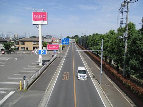 41陸橋3