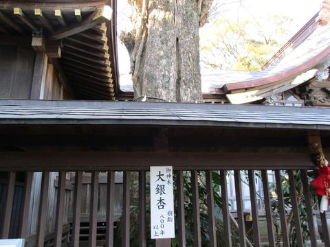 70麻賀多神社14