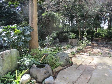 197日本庭園2