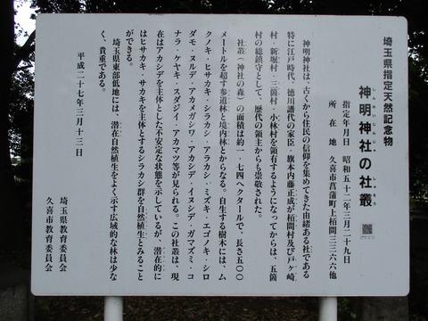 186神明神社3