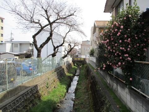 179栄橋5