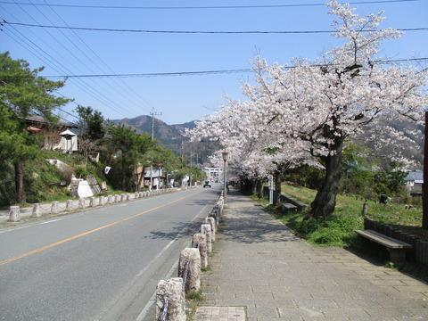 164宝登山神社参道2