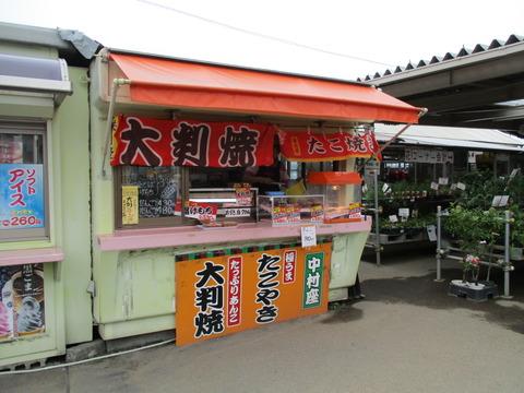 129JA南彩菖蒲グリーンセンター3