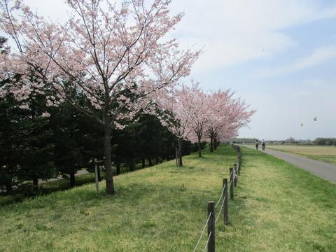 108小山総合公園3