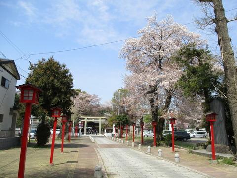 31須賀神社参道7