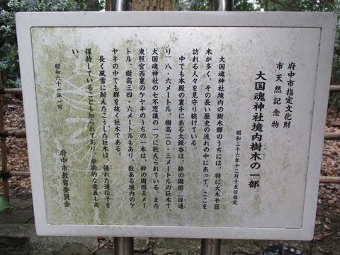 20大國魂神社10