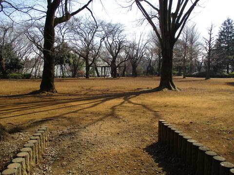 138柏公園1