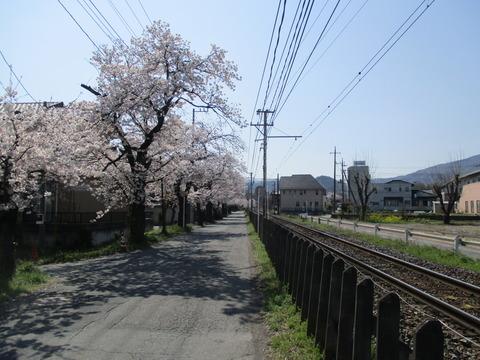 80南桜通り4