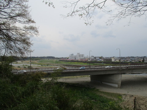 196祇園城跡3