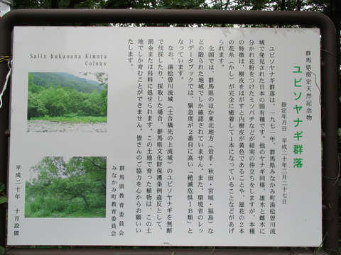 35新道入口4