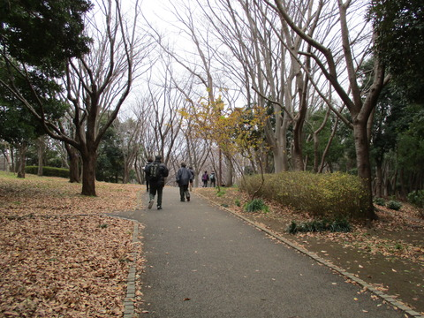12中央公園3