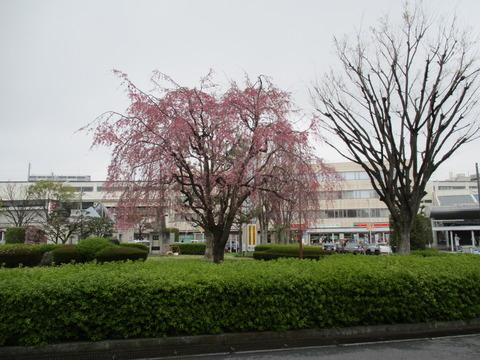 142熊谷駅ゴール
