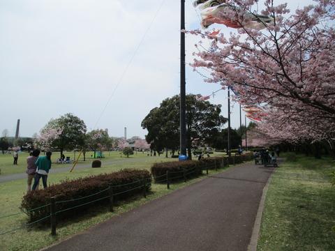 109小山総合公園4