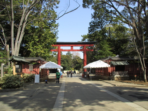 16氷川神社1