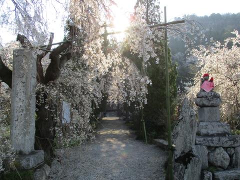 19法善寺3