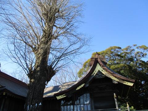 71麻賀多神社15