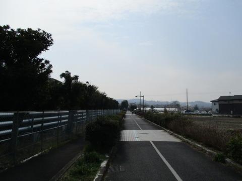 113下河原緑道5