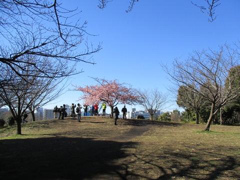09西郷山公園2