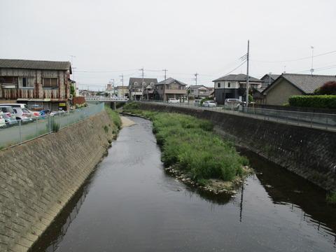 12つばき橋3