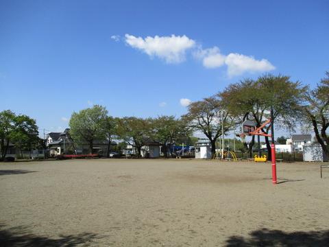 08日酸公園1