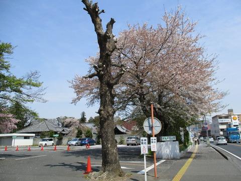 69須賀神社会館1