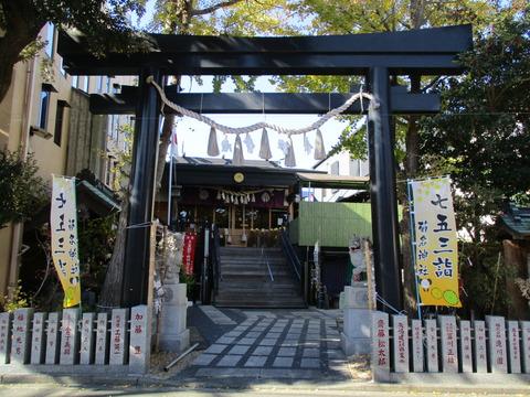 111菊名神社1
