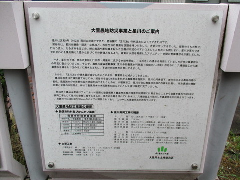 04星川シンボルロード3