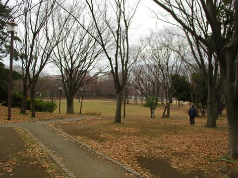 13中央公園4