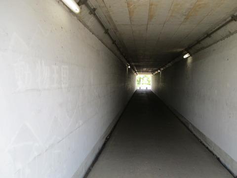 80トンネル4