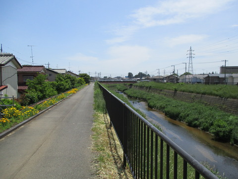 137唐沢川沿い