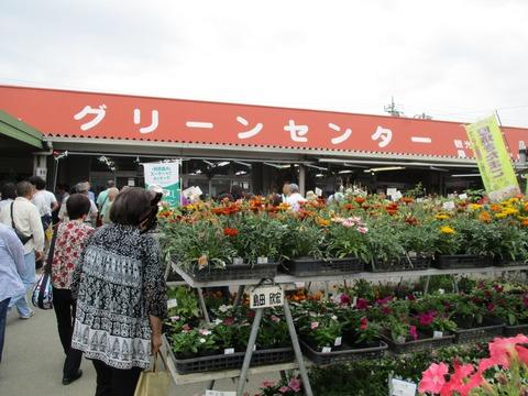 128JA南彩菖蒲グリーンセンター2