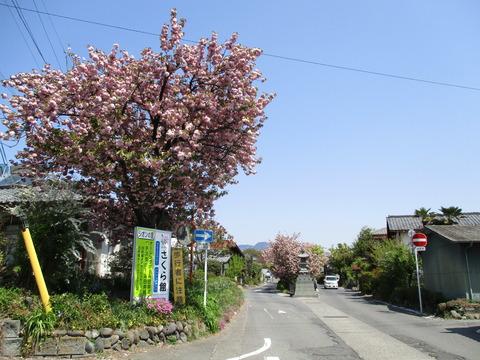 29白井宿1