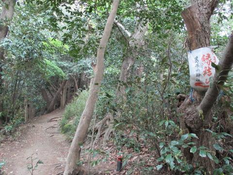 16葛原岡ハイキングコース2