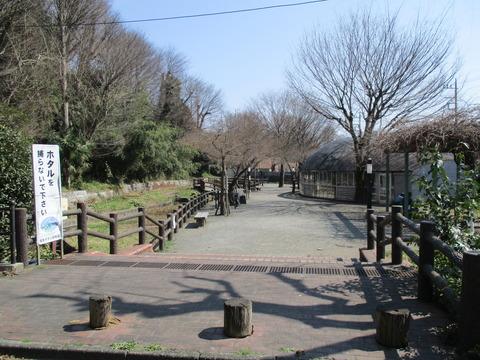 117ほたる公園1