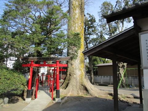 211南稲荷神社3