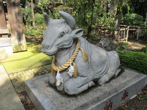 184白岡天満神社2