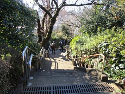 17西郷山公園10