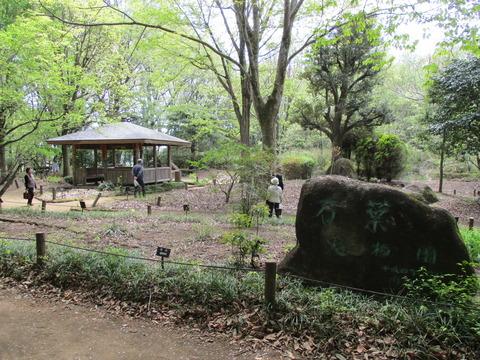 146万葉植物園2