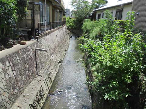 25蛭沢川