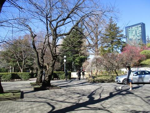 19菅刈公園2